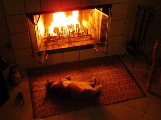 warmf